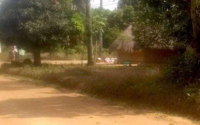 Salutations de Guinée