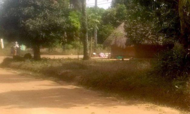 Auguri dalla Guinea