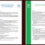 Reddito di Cittadinanza e di Emergenza, due guide